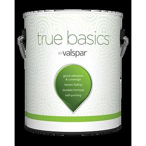 True Basics® by Valspar Exterior Paint